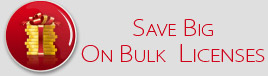 Save BIG On Bulk License